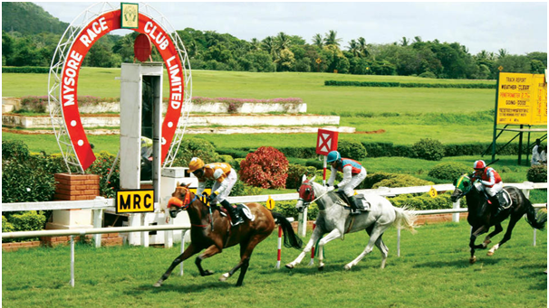 Best Horse racing betting sites in India online