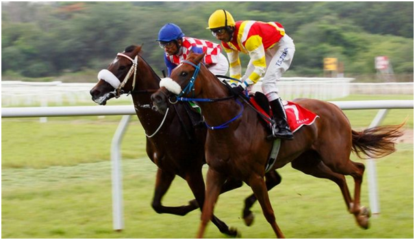 History of Horse Betting in India