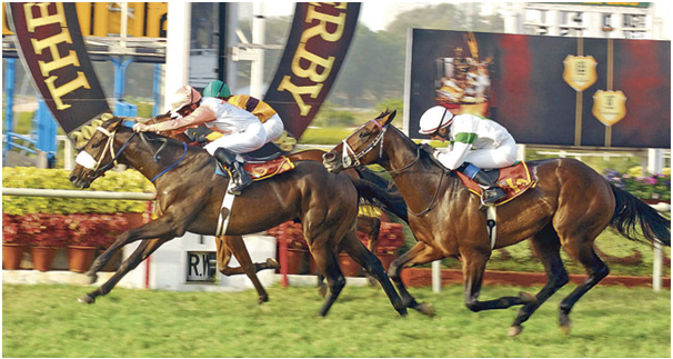 Horse betting in India