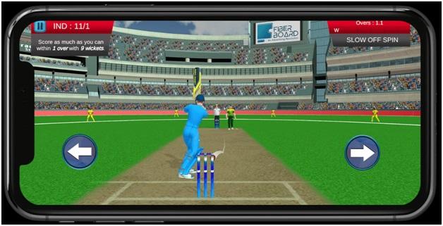 Knockout cricket