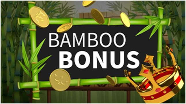 Bamboo Bonus at Royal Panda
